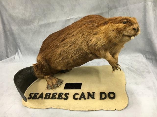 Fearless Beaver of NMCB 74